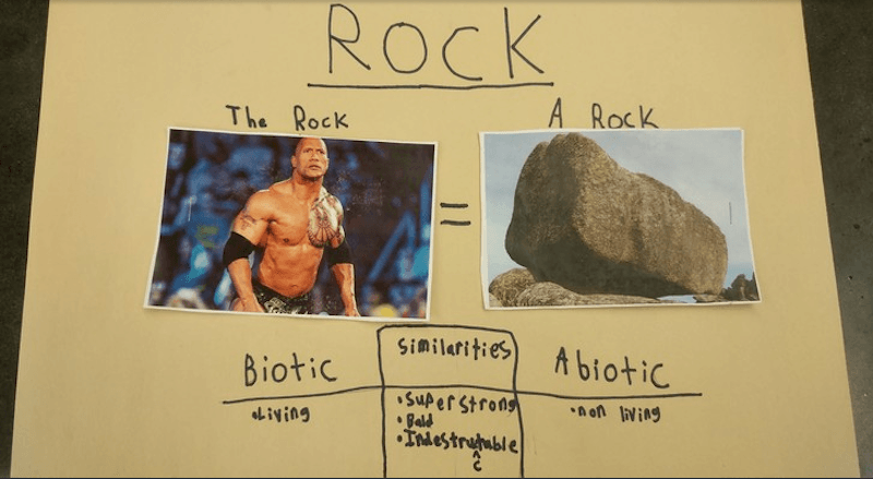 "Fifth grader did a science project on ""The Rock vs. A Rock"" and Dwayne Johnson loves it."