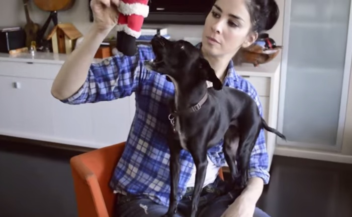 Sarah Silverman will inspire you to ask for the raise you deserve.