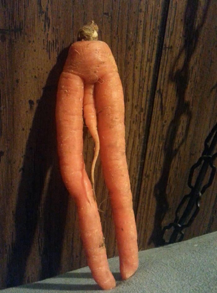 This carrot was really great in Boogie Nights.