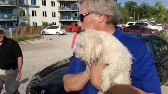 Guy breaks stranger's car window, but it's to save a dog, so it's OK.