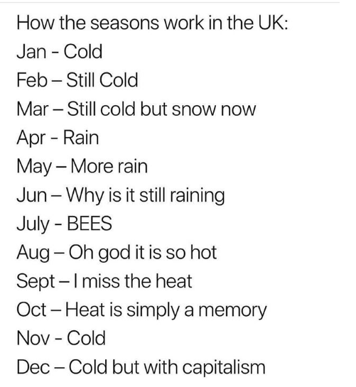 Memes Only British People Will Find Funny