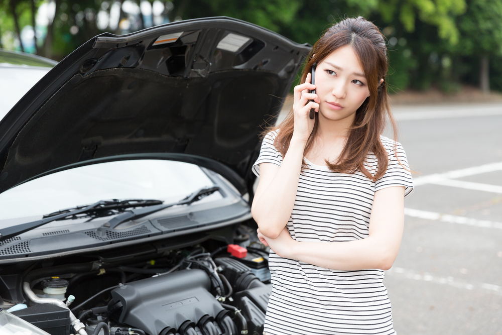 "Did you know if you try to find a stock photo of an ""Asian Woman Parking"" it is impossible to find one without her holding a cell phone?"