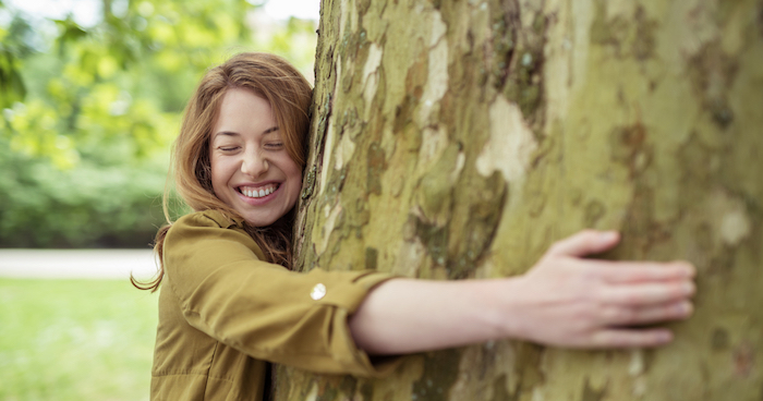 Sexually attracted to trees