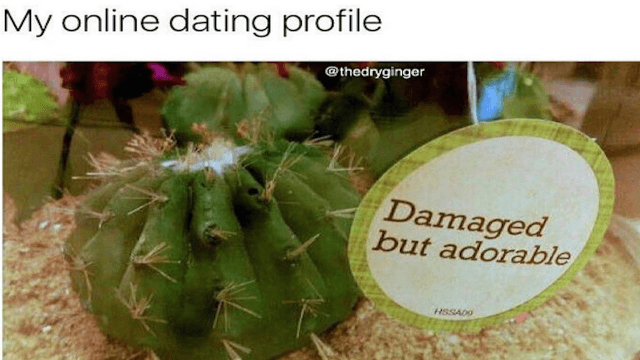 41 memes for that will make single people laugh and then probably cry.