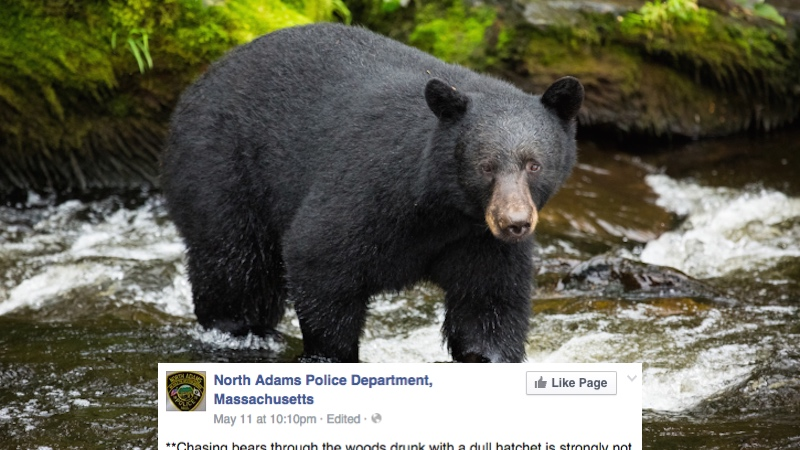 Police in a small town felt the need to send out this very specific bear-related Facebook warning.