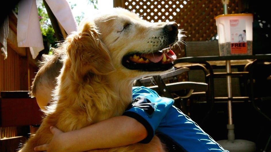 Smiley, the eyeless therapy dog, spends his days making everyone else smile.