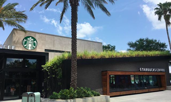 Starbucks Disney Springs: Star Wars Inspired Drinks for Force Friday