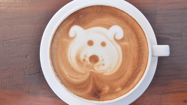 Did you know Starbucks will make your dog a 'Puppuccino?'