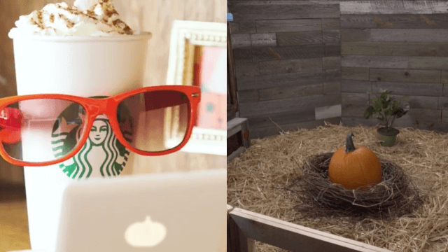 Starbucks is hilariously trolling us with its Pumpkin Spice Latte announcement.
