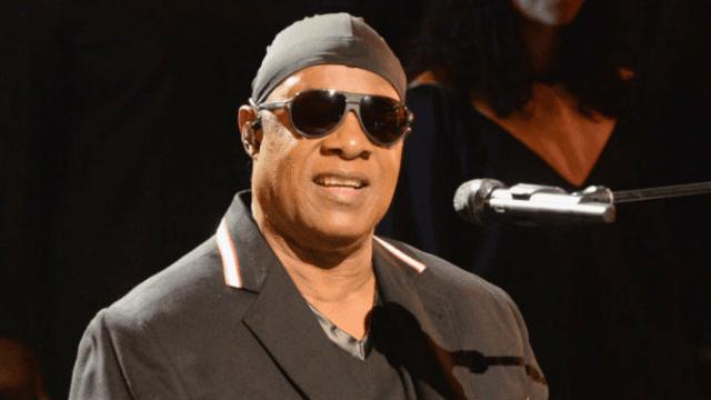 Stevie Wonder gets political during show in Central Park.