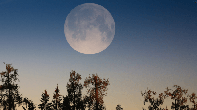 The 20 funniest reactions to Monday night's supermoon from people who didn't look up from their phones.