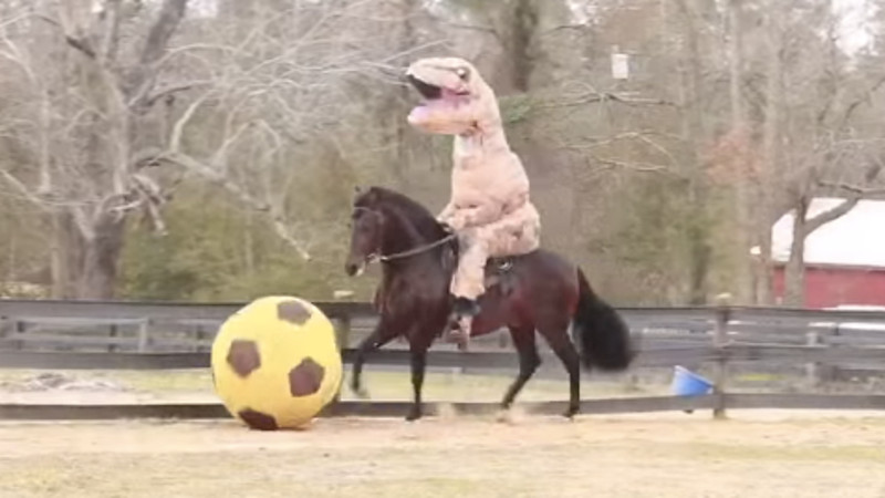 Everything about this video of a T-Rex riding a fancy horse dribbling a giant ball is wonderful.