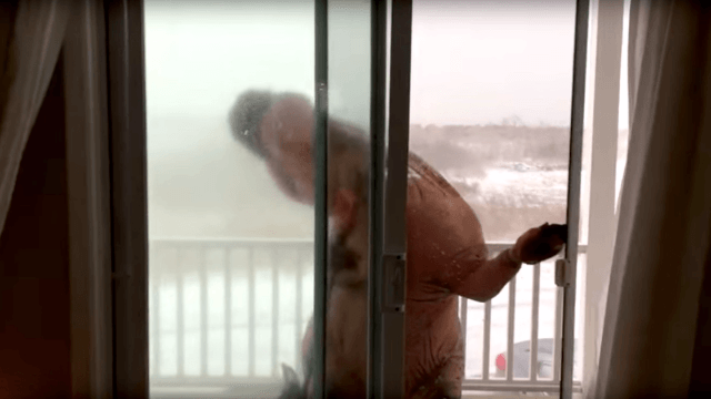 T-Rex attempting to shovel snow in the blizzard apparently didn't account for the wind.