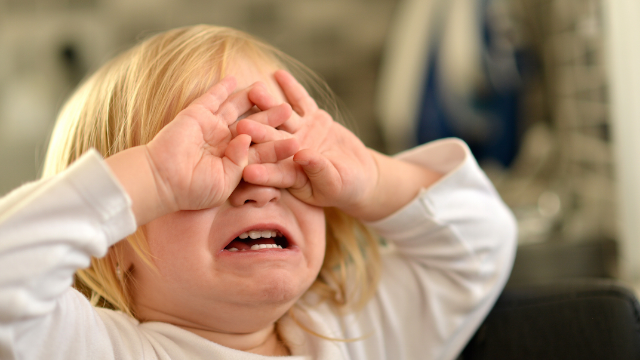 17 temper tantrum horror stories that will make you want to call a babysitter for tonight.