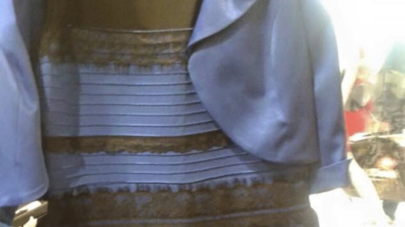 Good news! You can now be that person who wears a sexy #TheDress Halloween costume.