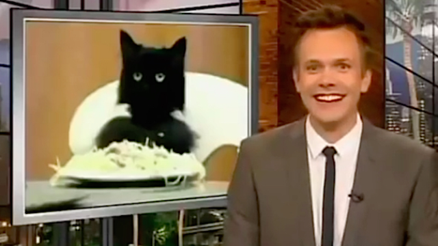 'The Soup' with Joel McHale has been canceled after you're-old-now seasons. #SpaghettiCat