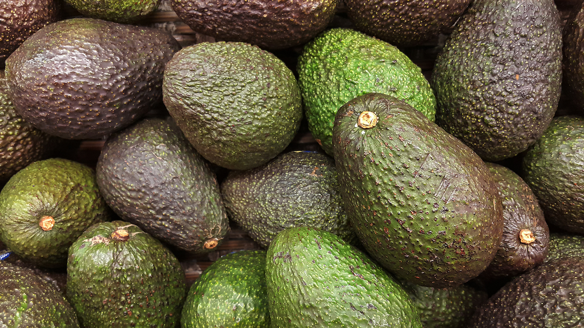 The ups and downs of having a bipolar mom... and 2,000 ripe avocados.
