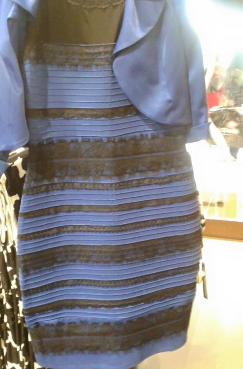 //cdn.someecards.com/posts/thedress-NdgXDb.jpg
