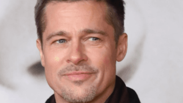 These identical twins spent $20,000 to look like Brad Pitt. Here's how it went.