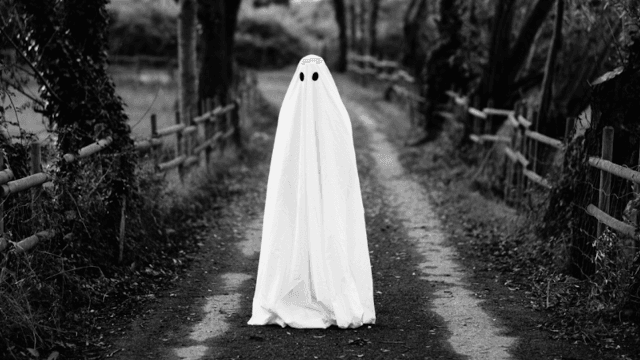 This video explains how your mind is tricking you when you 'see' a ghost.