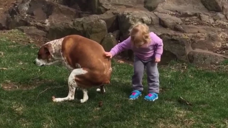 This weekend, let's all be this little girl congratulating her dog for pooping.