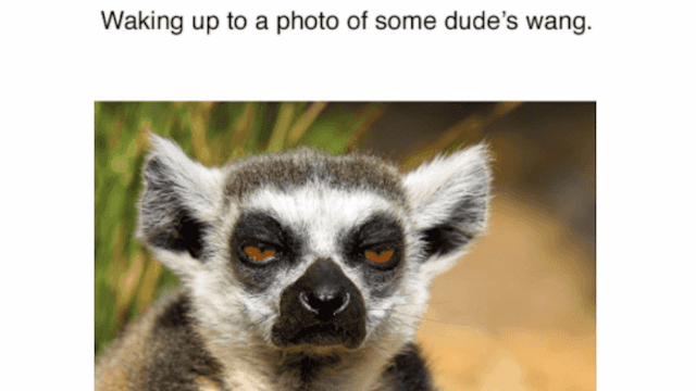 23 Memes For Women Who Are Over Online Dating Someecards Dating