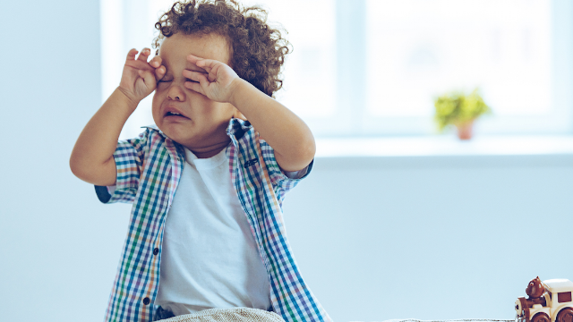 20 parents share the hilarious reasons their toddlers recently melted down. The house is shaped wrong.