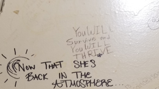 20 people who called numbers written on bathroom stalls share what happened.