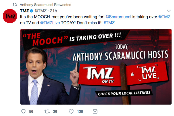 Anthony Scaramucci found his calling gossiping about Ivanka Trump's dating life on 'TMZ.'