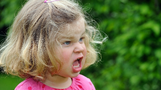 23 parents share the most absurd reasons their toddlers threw tantrums.
