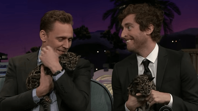 Tom Hiddleston and Thomas Middleditch cuddled some sweet baby animals, almost died.