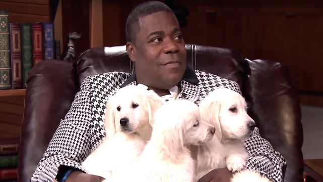 Tracy Morgan tells Jimmy Fallon he misses being in a coma, then gets covered in puppies.