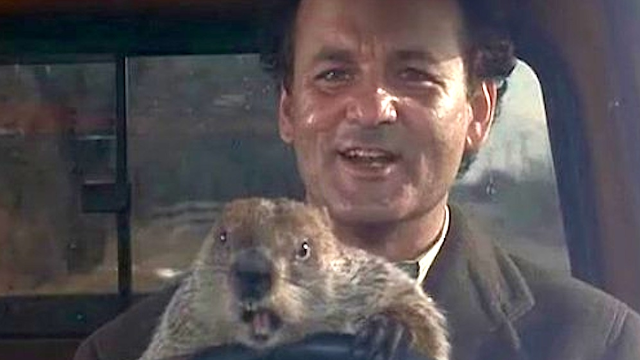TV station pays tribute to 'Groundhog Day' in way that will make fans of the film very happy.