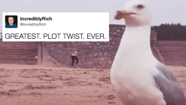 Watch this seagull pull off the heist of the century. You'll never feel safe at the beach again.