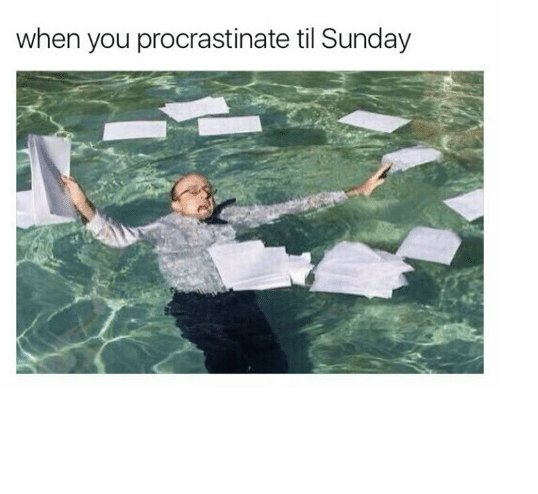//cdn.someecards.com/posts/when-you-procrastinate-til-sunday-relatable-😅😩-6093504png-KVuLT5.jpeg