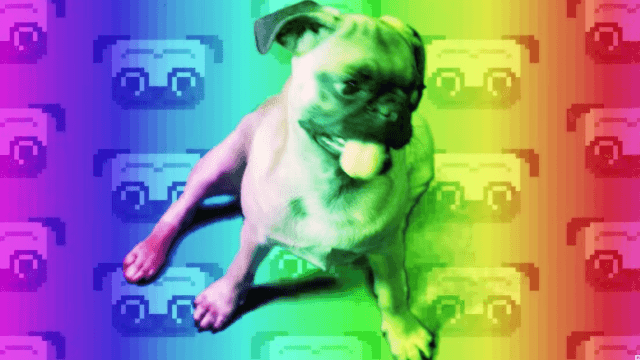 This is a hallucinogenic metal video about the history of pugs. Yes.