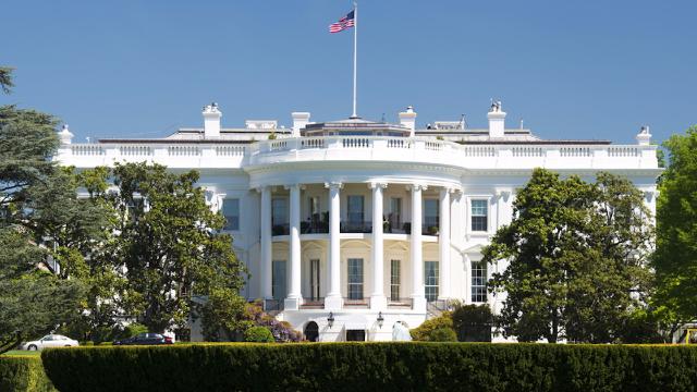 White House releases a Lauren vs. Yanny video. The internet hears 'trainwreck.'