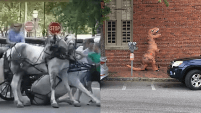 Woman faces charges after causing horse-drawn carriage accident in inflatable T-Rex costume.