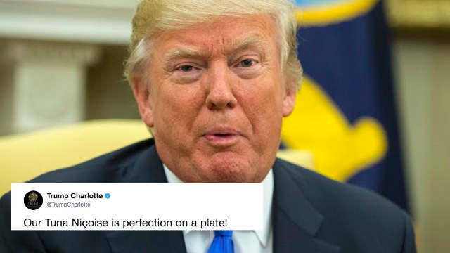 You can now see the world as Trump does thanks to a new Twitter bot.
