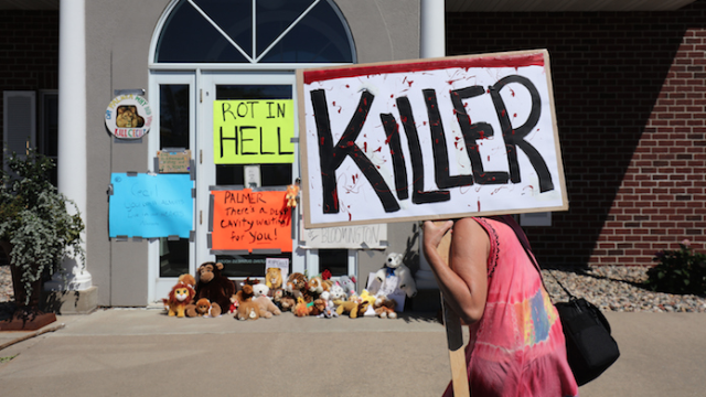 Zimbabwe calls for the extradition of Cecil's killer, as if that's the biggest thing troubling Zimbabwe right now.