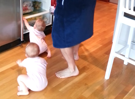 These twin babies are determined to get into the fridge no matter what their dad does.