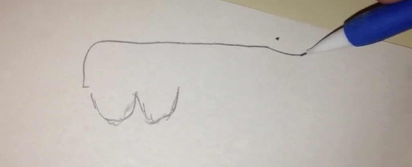 Someone is raising money to create the biggest dick drawing in the history of the universe.