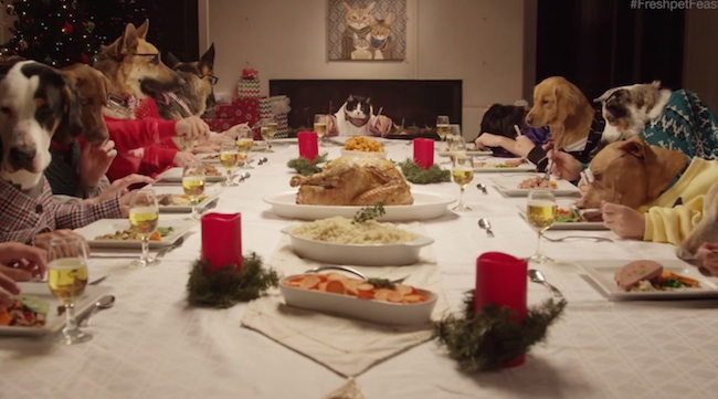13 dogs and 1 cat enjoying a holiday feast with human hands is an instant classic.