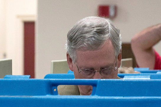Mitch McConnell got photobombed by an unhappy voter at his local polling place.