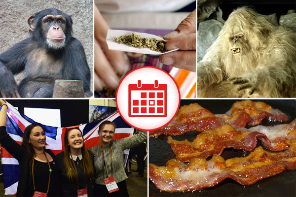 5 Things You Should At Least Pretend To Know Today - September 19, 2014