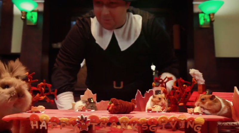 """Tiny Hamster"" eats a tiny Thanksgiving with his tiny friends, cooked by a stressed-out giant chef."