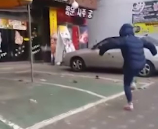 This girl has mastered the ancient art of shooing pigeons.