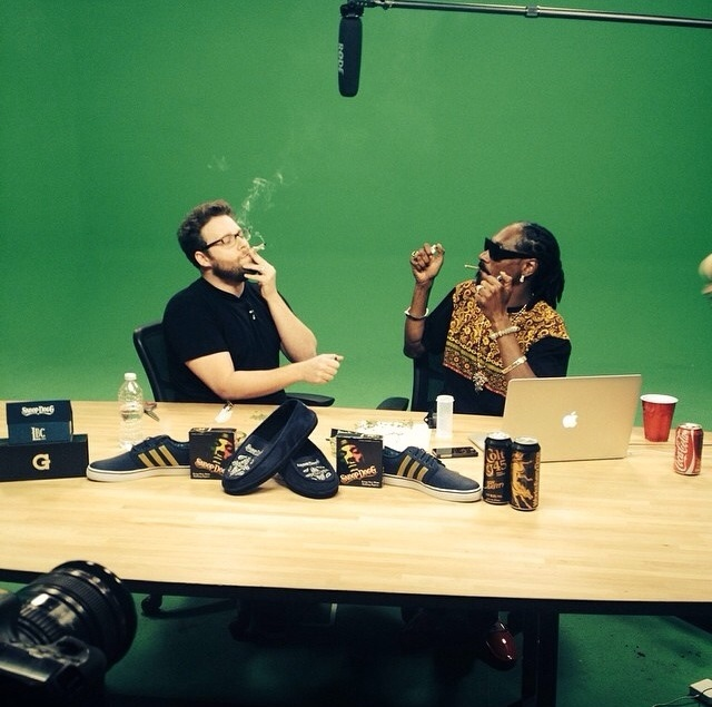 Snoop Dogg and Seth Rogen smoked weed in front of a green screen. The Internet couldn't resist.