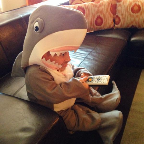 Vern Troyer just won Shark Week