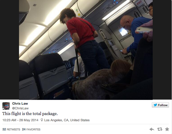 A cross-country flight made an emergency landing because a dog took a crap in the aisle.